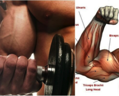 3 Reasons Why Your Biceps Won't Grow!