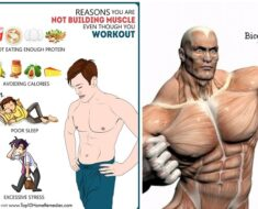 7 Reasons Why You're Not Building Muscle